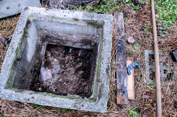 Septic Tank Maintenance in Lake Wales, Florida